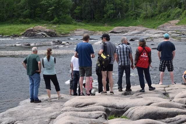 Observers, curious and volunteers gathers along the river to watch the beluga.