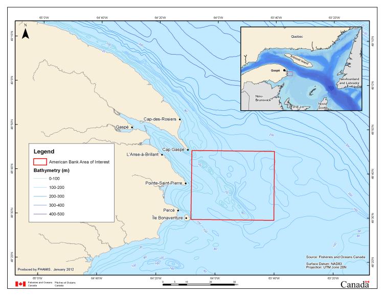 À la pointe est de la Gaspésie se situe la future aire marine protégée du Banc-des-Américains