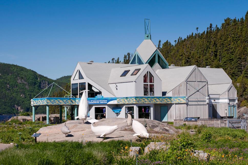 Le Centre d'interprétation des mammifères marins et les sculptures de bélugas grandeurs natures dans le Jardin de la Grève