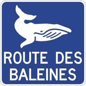Logo route des baleines