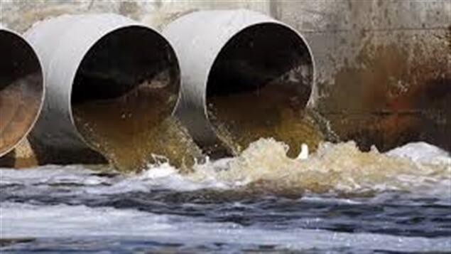 Des canaux d'évacuation des eaux déversant une eau brunâtre.