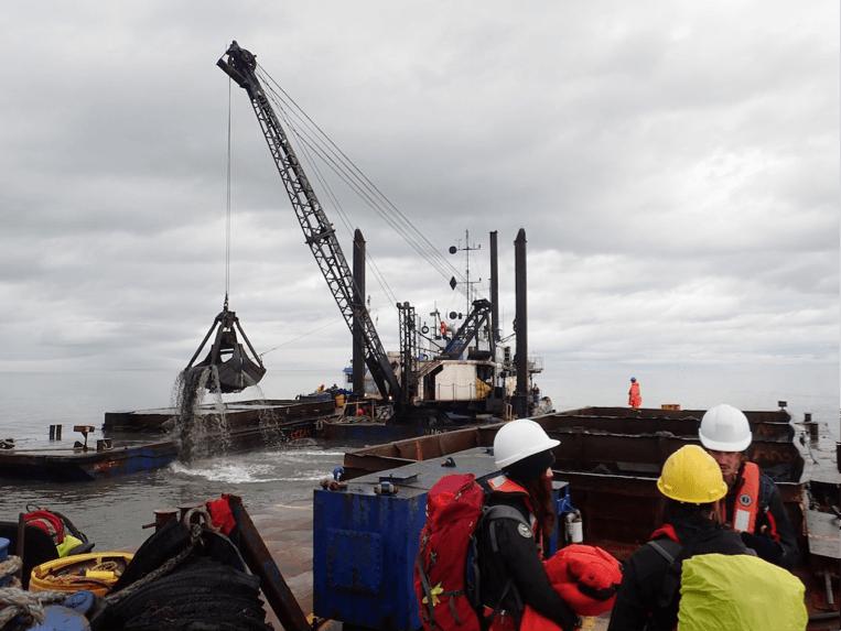 Observateurs de mammifères marins sur un chantier