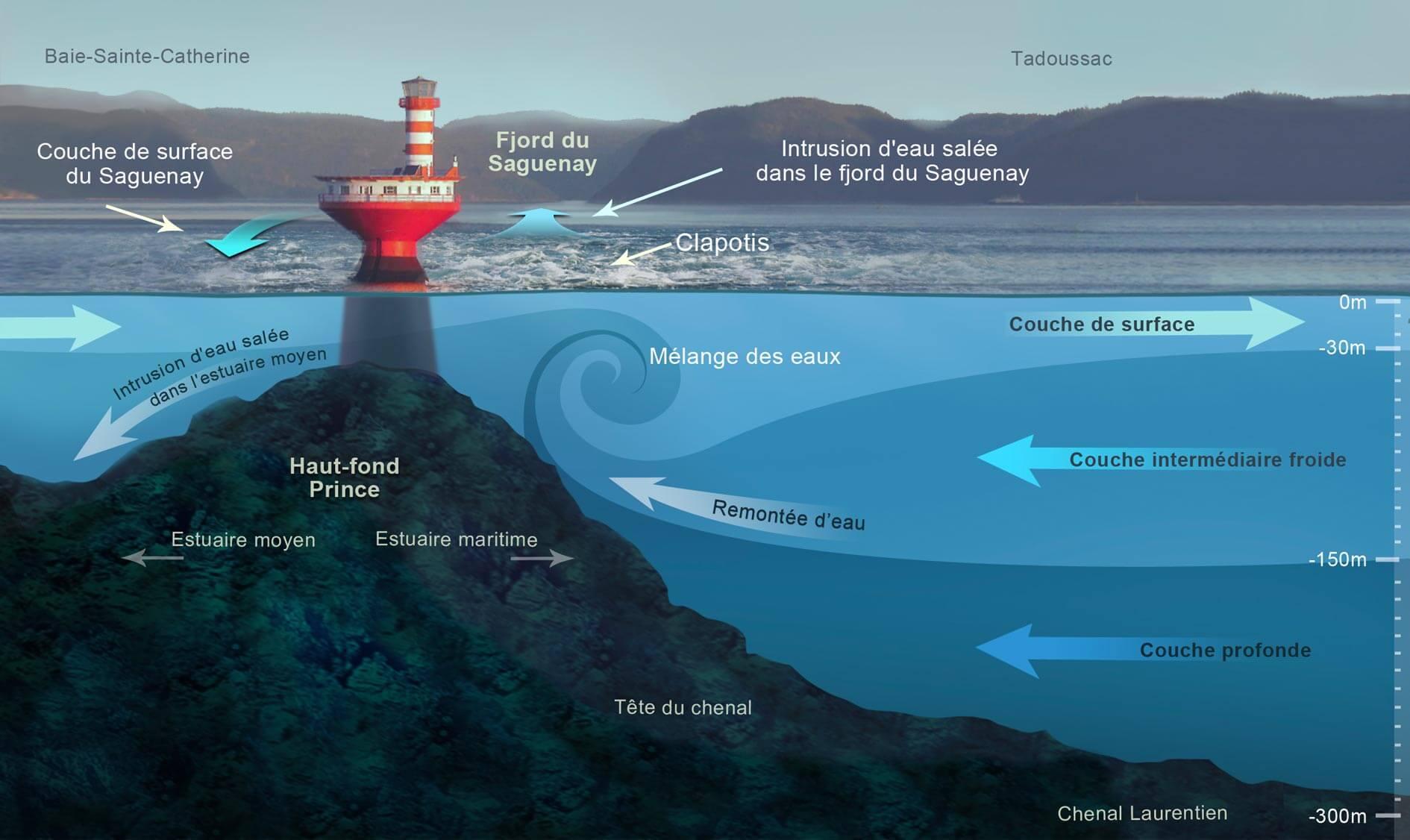 Caractéristiques des couches d'eau dans le chenal Laurentien à la hauteur du phare du Haut-fond Prince