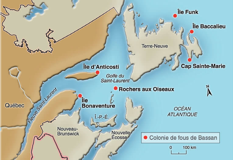 Location of the six colonies of Northern Gannets in North America.