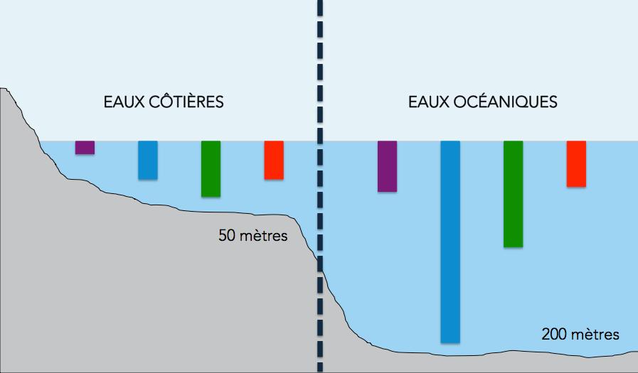 Graphique illustrant la différence de pénétration de la lumière en eaux côtières par rapport aux eaux océaniques.