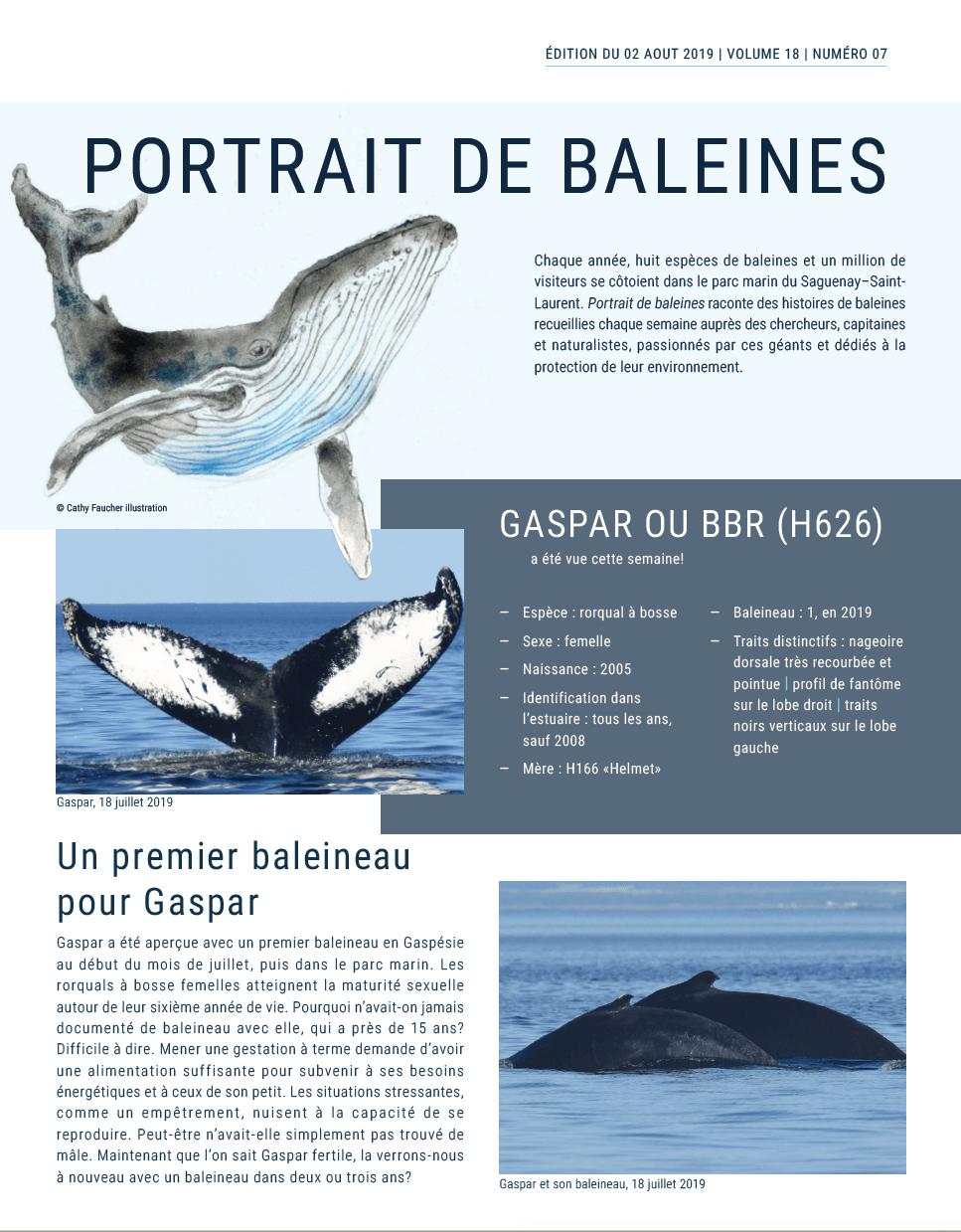 The front page of Portrait de baleines