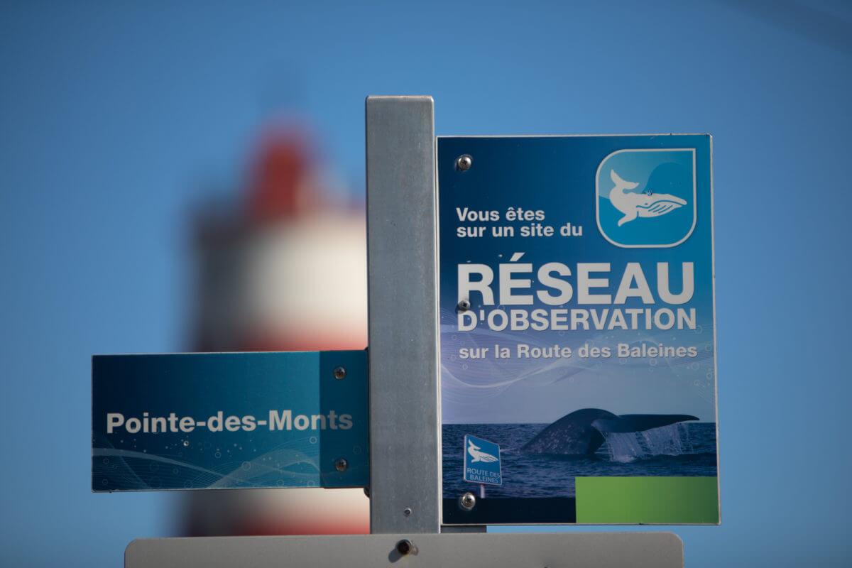 Affiches indiquant le nom du lieu et «Vous êtes sur un site du Réseau d'observation sur la Route des Baleines»