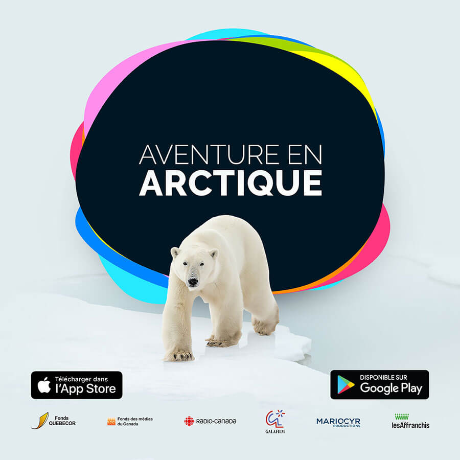 Image d'un ours polaire devant le titre de l'application