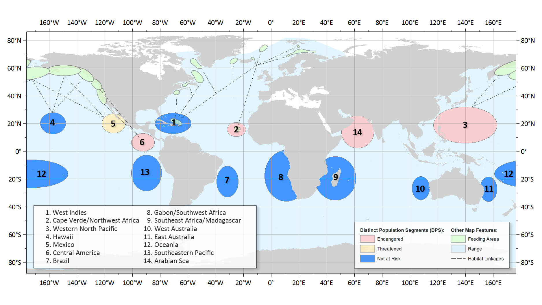 Global distribution of humpback whale populations © NOAA