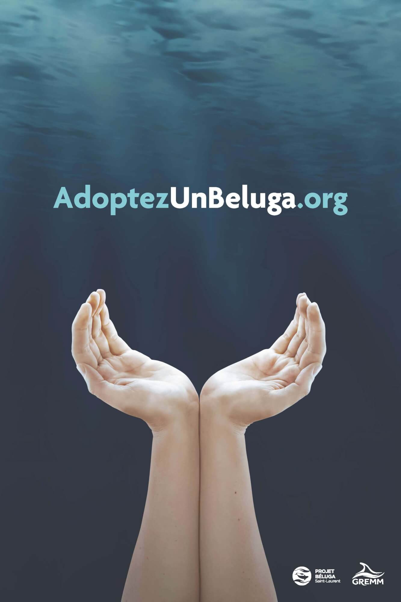 Affiche promotionnelle Adoptezunbeluga.org