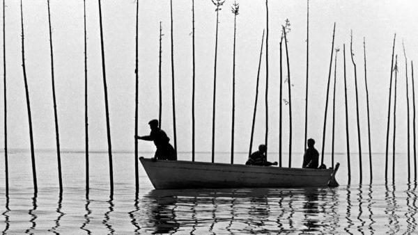 Trois hommes dans une barque installent de longues perches dans l'eau pour pêcher le béluga.