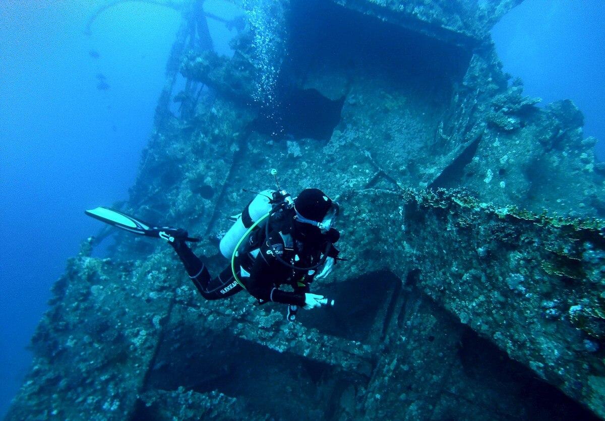 Un plongeur nage près d'une épave couverte d'algues
