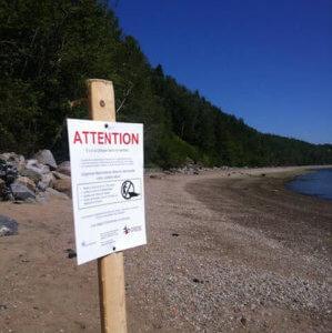 Affiche de sensibilisation à l'importance de laisser les phoques tranquilles plantée sur une plage.