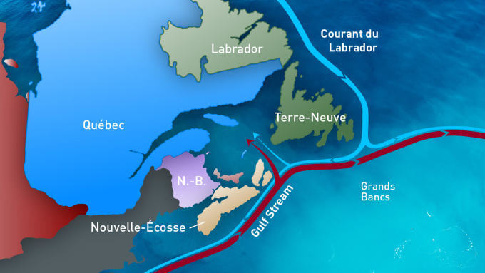 Map of currents in the St. Lawrence including the Gulf Stream.